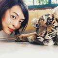 Crystal Chen Photo