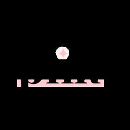 Pretty little Marketer logo