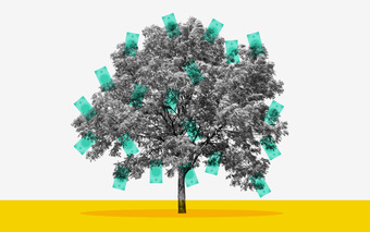 No Planet B: How to Mindset Your Carbon Offset
