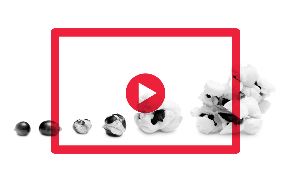 Start Creating Interactive Videos