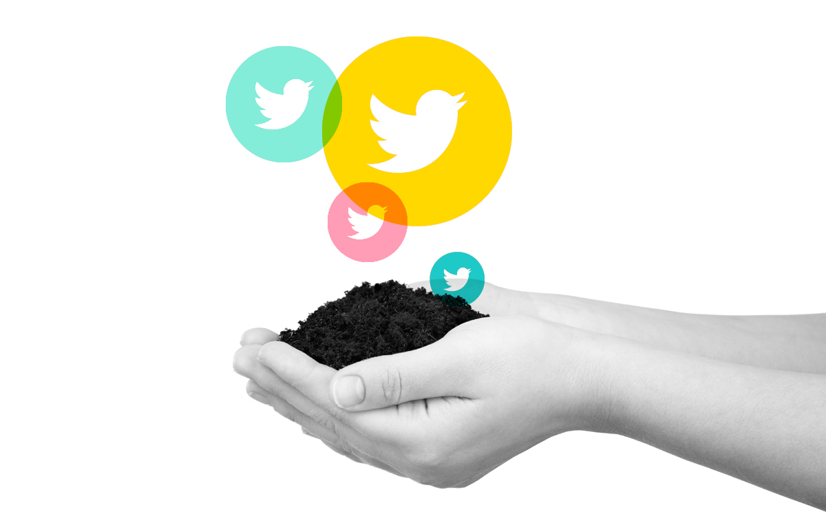 Growing on Twitter: How to Build Communities