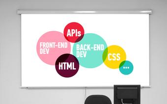 Web Development Basics (Online)
