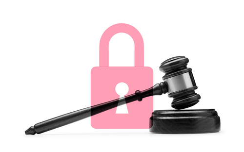 Essentials of Startup Law: Privacy and Data Collection